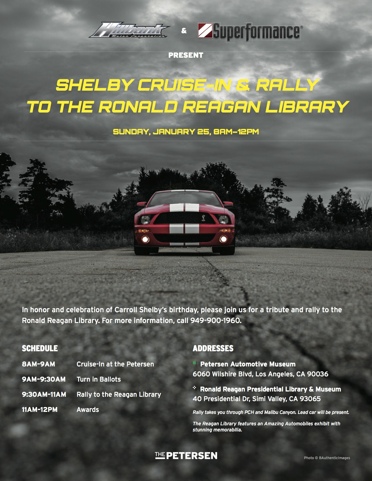 Shelby Cruise In